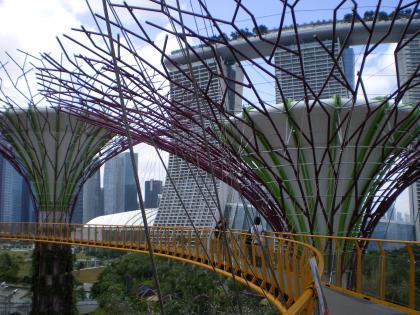 シンガポール2013.1スカイウォーク