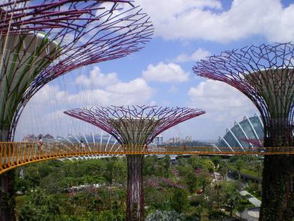シンガポール2013.1スカイウォーク3