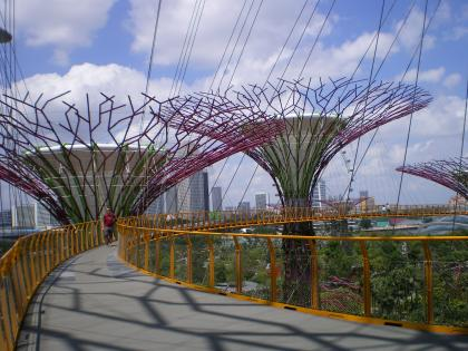シンガポール2013.1スカイウォーク4