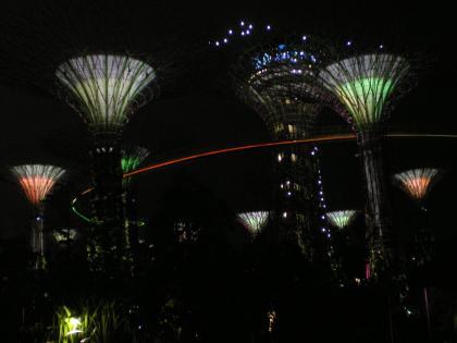 シンガポール2013.1スーパーツリー夜景2