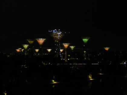シンガポール2013.1スーパーツリー夜景