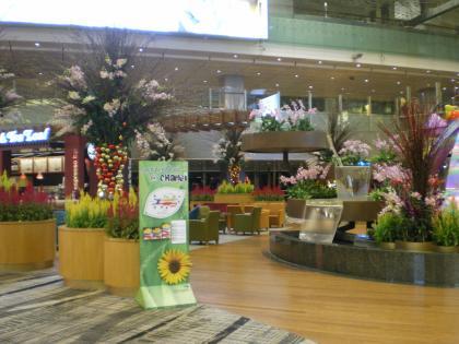 シンガポール2013.1チャンギ空港第3ターミナル