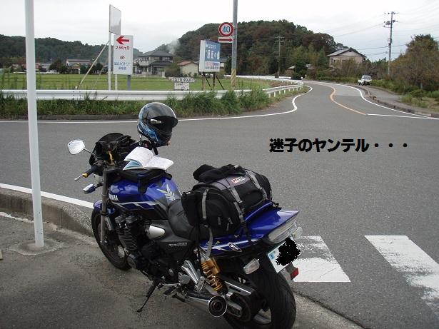 s_maigo.jpg