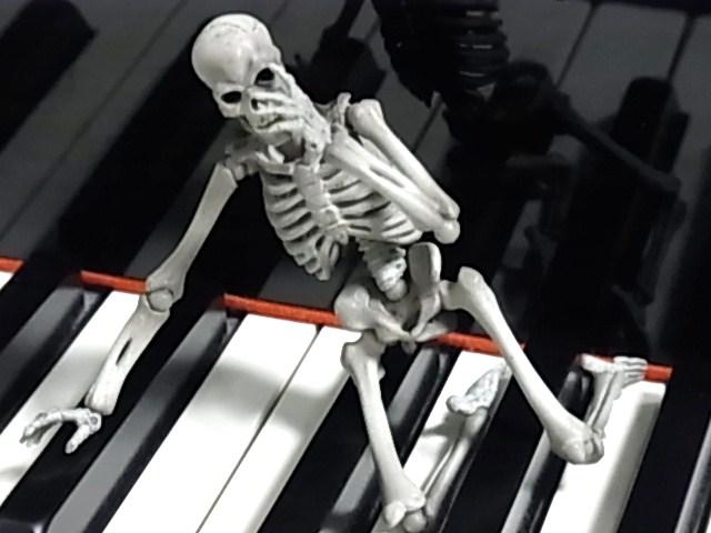 鍵盤上のマリサ 017