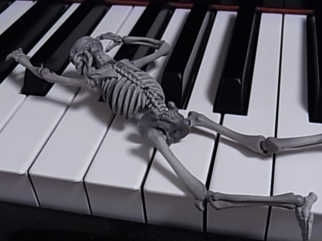 鍵盤上のマリサ 002