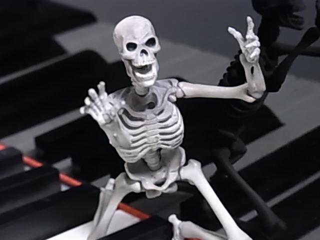 鍵盤上のマリサ 007
