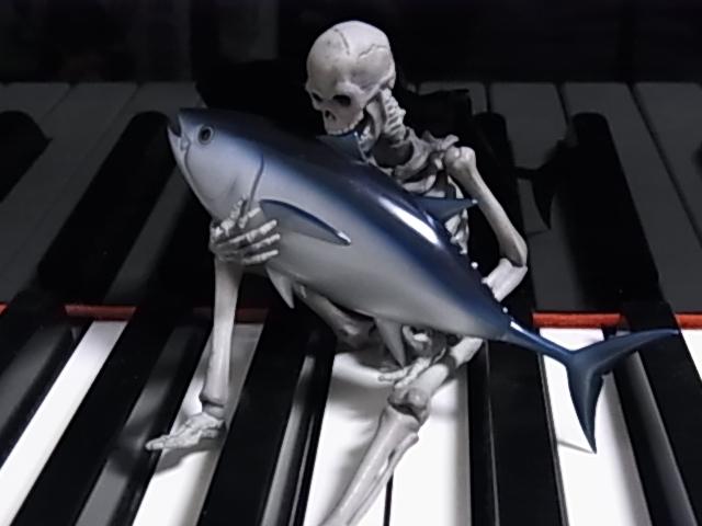 鍵盤上のマリサ 005
