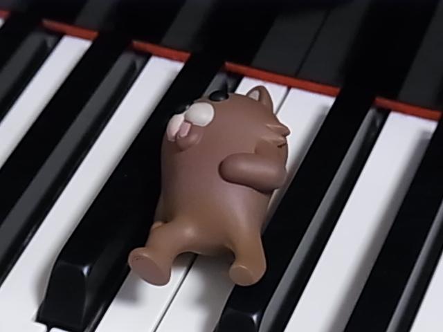 鍵盤上のマリサ 003