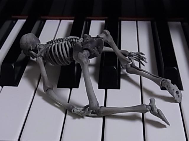 鍵盤上のマリサ 016