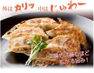 gyoza_sample3.jpg