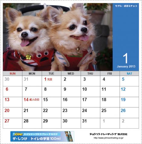 チョコ&ぽぽカレンダー201301
