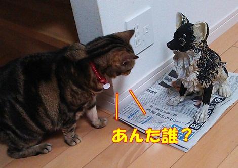 blog2DSC_1102.jpg