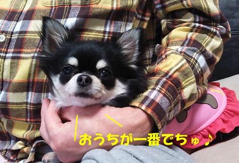 blogDSC_1079.jpg