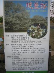tenhyou100502-102