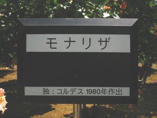 yono-bara100516-214