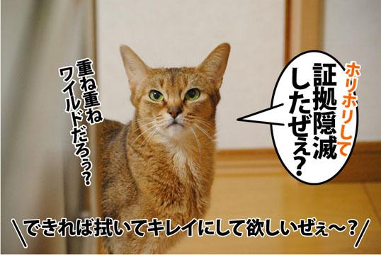 20120410_04.jpg