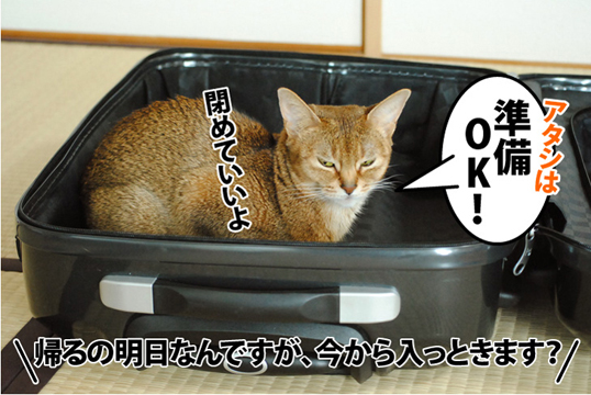 20120413_03.jpg