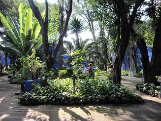 museo frida kahlo_3