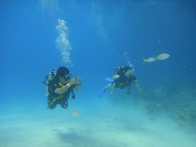 diving_001.jpg