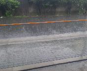 局地の大雨!