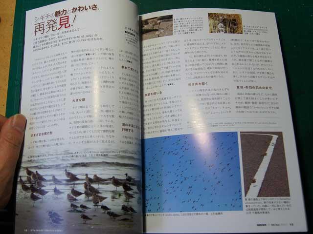 birder201304.jpg