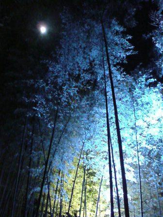 嵐山20102