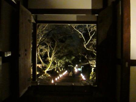嵐山20104