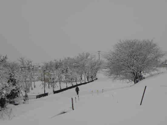 冬景色110115a