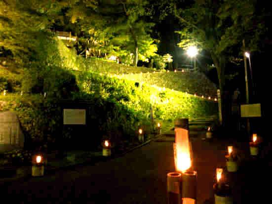 楽山苑ライトアップ003