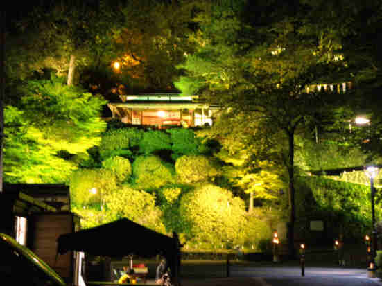 楽山苑ライトアップ001