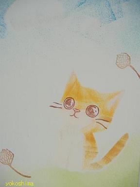 ケシ 猫顔キレイ2