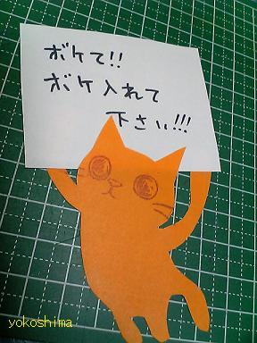 ケシ 猫顔応用6