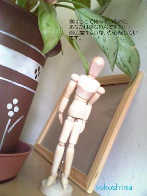関節人形さん