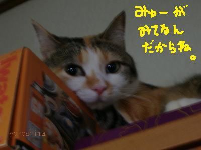 ミュー監視役
