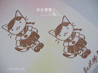 女子高生ネコ3