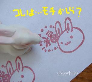 福ウサギ4