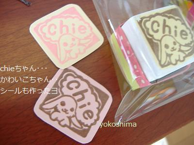 chieちゃん2