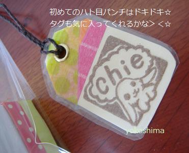 chieちゃん3
