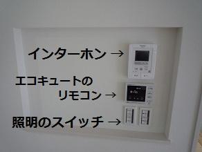 P1040821-.jpg