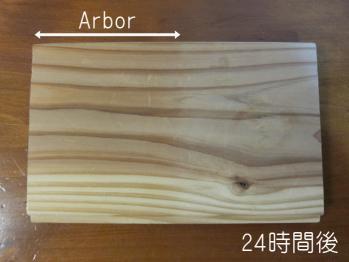 arbor02.jpg
