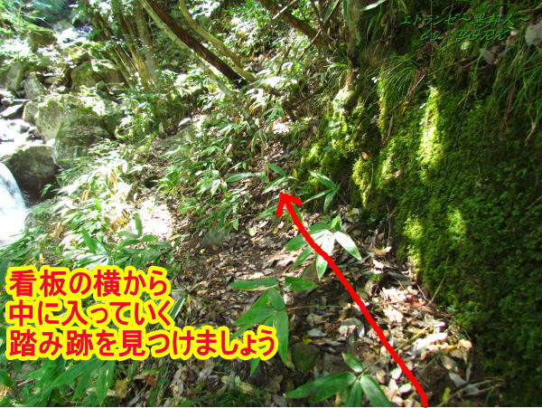 3562鈴木の滝の入り口付近140831