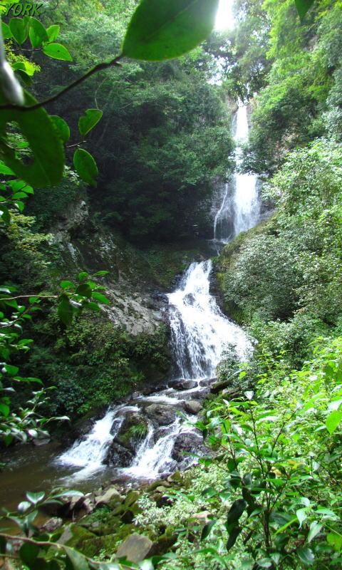 携帯用 3583鈴木の滝480×800