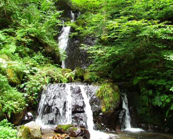 壁紙 3804屋敷の滝(奈義町)1280×1024