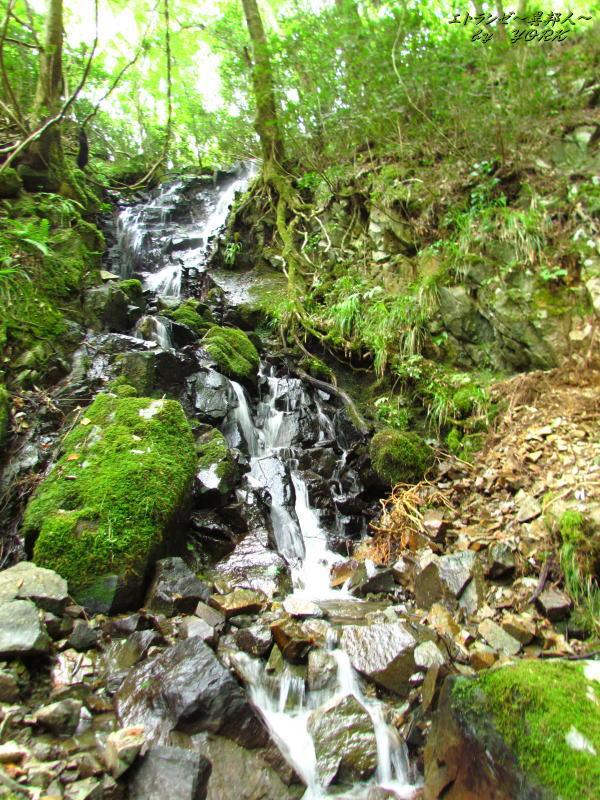 3686蛇淵の滝の脇滝140915