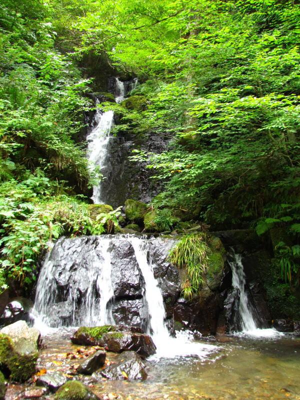 3802屋敷の滝(奈義町)140915