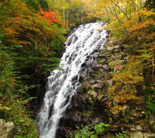 スマホ用 5442秋の布滝960×854