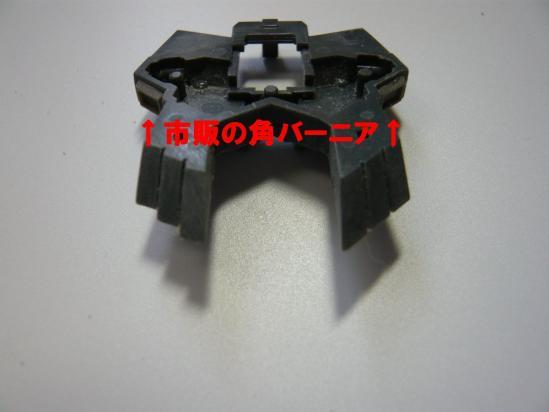 P1030705.jpg