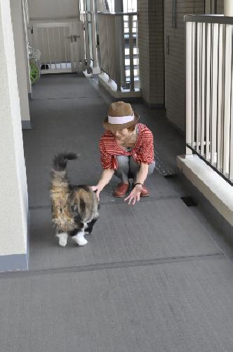 ゆぼぼさん201409160004(1)