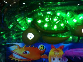 13亀の目
