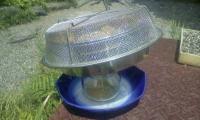 H220606初のハチミツ絞り